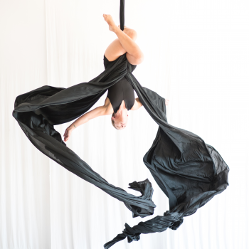 The Vertical Dance Floor: Aerial Dance Chicago brings Blackbird to the Ruth Page Center