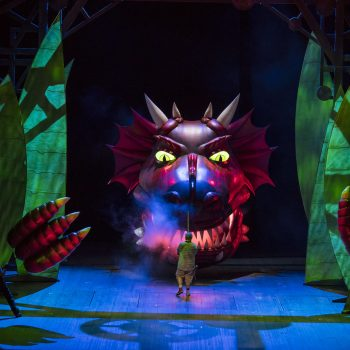 How To Not Train Your Dragon: A Review of Siegfried at Lyric Opera of Chicago